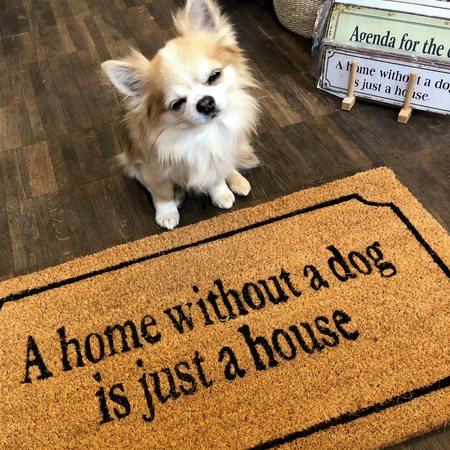 fussmatte a home without a dog is just a house