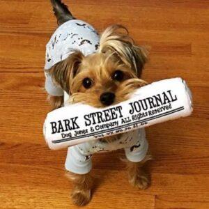 barkstreet journal
