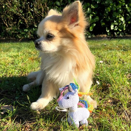 organic unicorn small dogs toy
