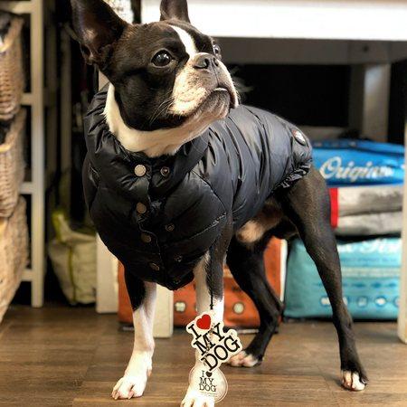 daunen jacke von i love my dog black