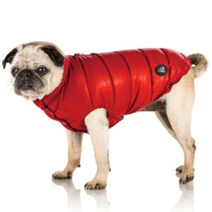 daunen jacke von i love my dog salsa red