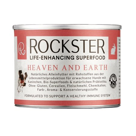 rockster heaven and earth