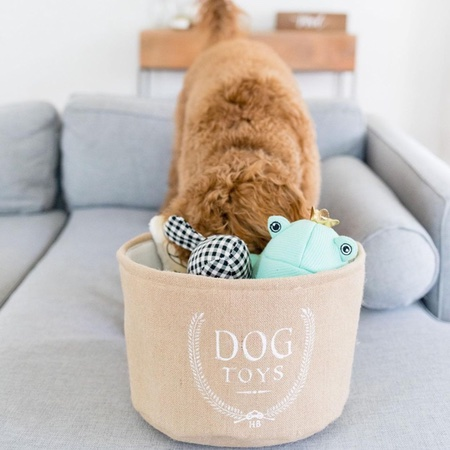 aufbewahrungsbox dog toys