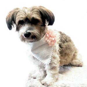 festliches flower bandana rosa