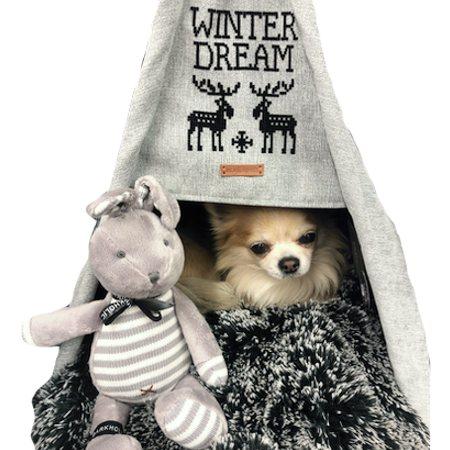 happy camper winter dream