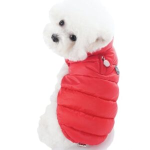 puppy angel padded vest rot