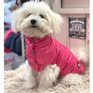 daunen jacke von i love my dog hot fuxia