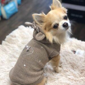 cashmere hoodie mit kristall beige