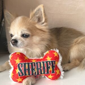 funny toy sheriff
