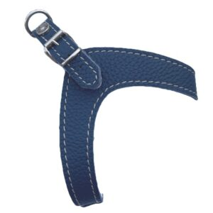hundeharness kite royal blau