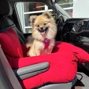 autositz first class verry red von monchouchou