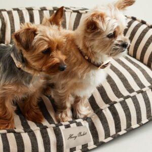 vintige stripe hundelounge
