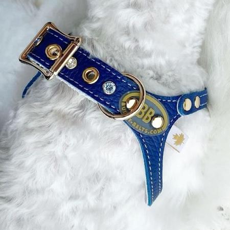 buddy belt luxury emblem