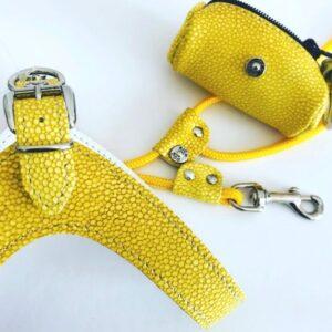 hundeharness kite luxury soft yellow