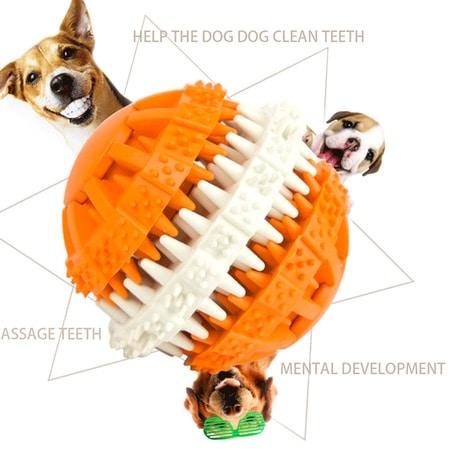 dental rubber