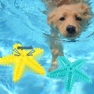 starfish squeaky