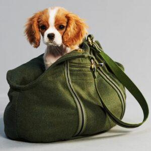 Die stylische Loden Fashion Hundetasche Aussie
